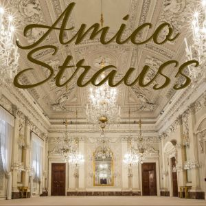 Amico strauss - Made with PosterMyWall